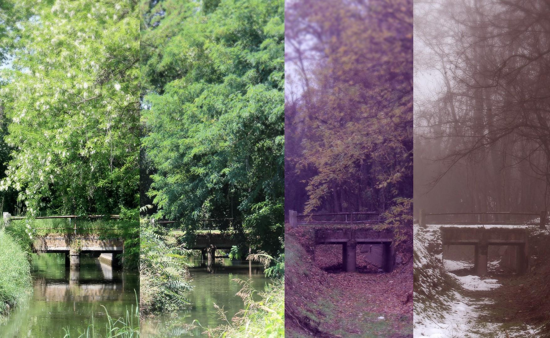 That Enchanted Bridge – 4 Seasons Series